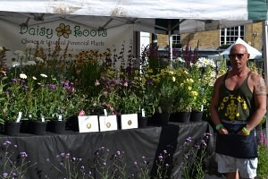 Steve from Daisy Roots with his RHS